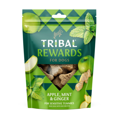 Tribal Cookies Appel, honing en gember