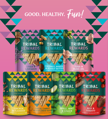 Tribal cookies pakket