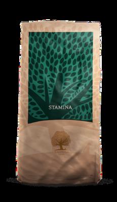 Essential Foods - Stamina - 12,5kg